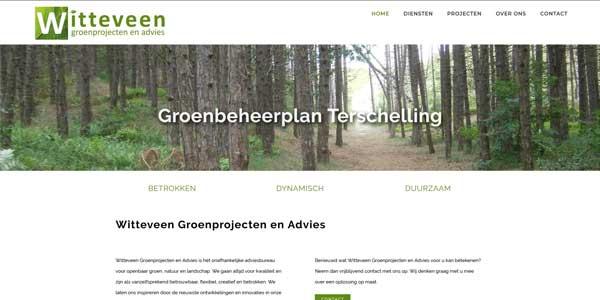 Webdesign Dronrijp Witteveen Groenprojecten