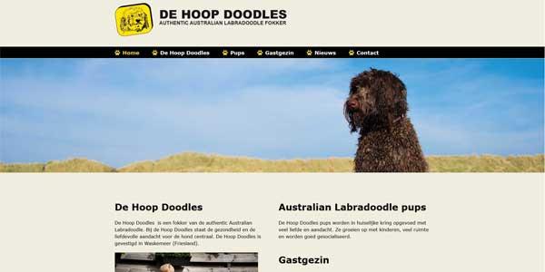Webdesign Waskemeer de Hoop Doodles
